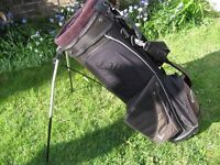 Calloway 'IZZO' carry bag
