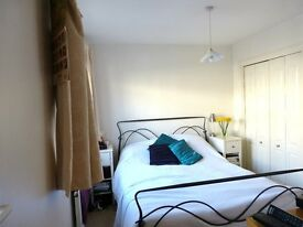 Double room and ensuite bathroom, in 4-bed houseshare with living room, garden and conservatory