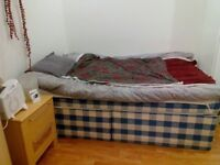 Ensuite Bedroom with Separate Entrance- Available ASAP