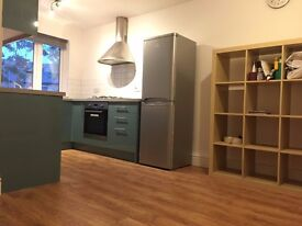 Amazing Newly Refurbished 3 Dble Bed House with Garden in West Norwood, Nr Tulse Hill, Dulwich