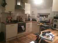 Room in nice 2 bed flat for mature student/professional - £325