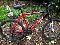 (new mens 21 speed mountain bike (double disc