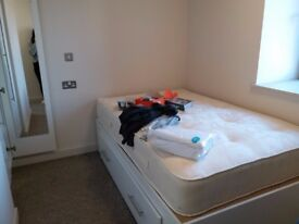 Alwyn Court Cardiff Student Accomodation (Ensuite)