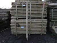 Fence Post 75mm-100mmx2.4m long