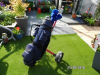 Reduced price Full set carbon fibre golf clubs, howson bag complete with trolley plus accessories
