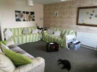 House SWAP- wanting 3 bed Devon