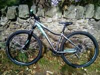 Specialized Myka 29er