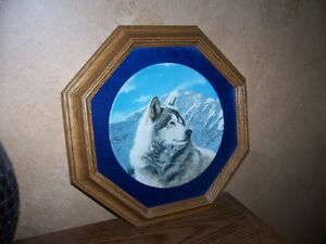 Collectible Plates & Frames - Wolves London Ontario image 3