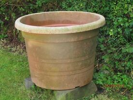 very large plastic plant pot