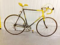 Giant Steel Road bike 12 speed Index Gearing Fully serviced