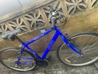 Apollo CX10 hybrid adults unisex bike only £65