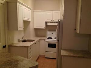 FULLY RENOVATED 2 BD 2 BATH APT! STEPS TO QUEEN'S- 432 UNION ST Kingston Kingston Area image 4