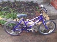bike for boy