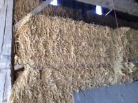 3x7 square bales of straw feed quality