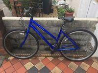 Apollo cx10 ladies hybrid bike 21 gears 18 inch aluminium frame 28 inch alloy wheels v brakes