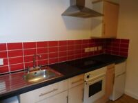 RESERVED Compact and cosy studio flat in Redfield - Private Landlord