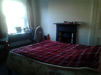 Cosy double room in Brynmill
