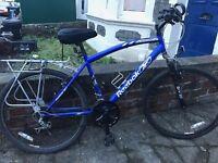 Reebok Evolve Men's Bike, blue.