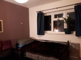 Double room facing garden on ground floor in flat share