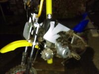 50cc pitbike! Perfect for a learner