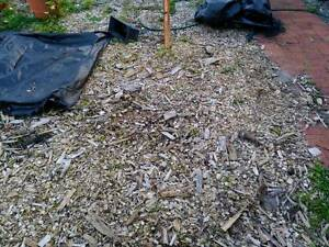 Free Fill from garden bed ~ 10m3 Rivervale Belmont Area Preview