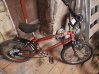 Raleigh grifters 3 off