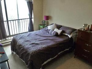 Time Square Peterborough Bachelor Apartment for Rent: Ashburnham