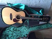 Freshman Electro-Acoustic Guitar - £600 (RRP £999)