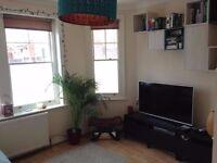 Garden flat in Crouch End