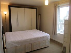 GREAT LOCATION -CROOKES S10 SPACIOUS 1 BEDROOM APARTMENT TO RENT