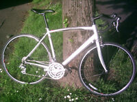 SPECIALIZED ALLEZ - Serviced - Excellent Condition - Metallic Silver