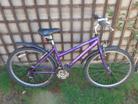 ladies raleigh bike , new tyres,inner tubes, lights, d-lock ready to ride can deliver