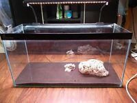 2.5ft Clear Seal Tank