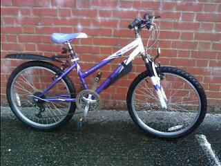 FOR SALE: Sabre Orchid Series 2 12 Speed Girls Mountain Bike Purple/White