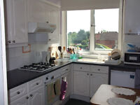 Very nice 3 bedroom modern apartment in Westbourne to rent with no agency fees!