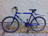 "Blue Apollo Radiant Bike 21"" Frame CAN DELIVER"