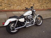 Harley Davidson Sportster Custom XL1200C White IMMACULATE