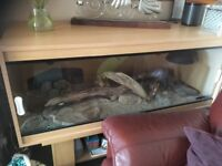 Very large tank , in fantastic condition , all light , wooden pieces , heaters and so much more