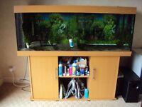5ft juwel Rio 400 marine tropical malawi fish tank aquarium with setup leicester