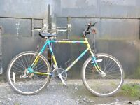Raleigh Mantris Retro Mountain Bike - lovely colour scheme