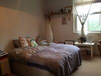 Lovely large double room short term Xmas Dalston, Hackney, Stoke Newington