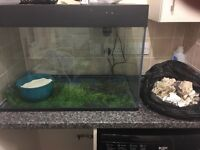 185 litre fish tank with built in filter plus rocks sand and heater