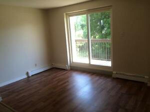 1 & 2 Bdrm Apartments, 1 Block to Intercity Mall