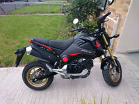 Honda MXS125 Grom - 2016 - Very low mileage - Comes with tail tidy and LED running lights