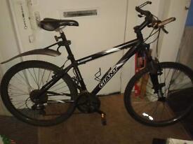 gaint mountain bike
