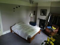 Double Room In Vegan/Veggie House Share in St George. £425inc