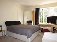 Lovely studio flat very close to Raynes Park station