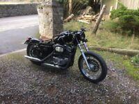 North Wales Harley Davidson bobber sportster low mileage