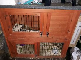 Small Animal 2 Tier Cage - 2 Guinea Pigs - An Outdoor Hutch