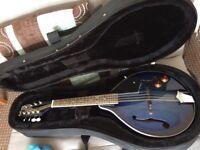 Ashbury AM10E Electro Acoustic Mandolin + case + new pack of strings